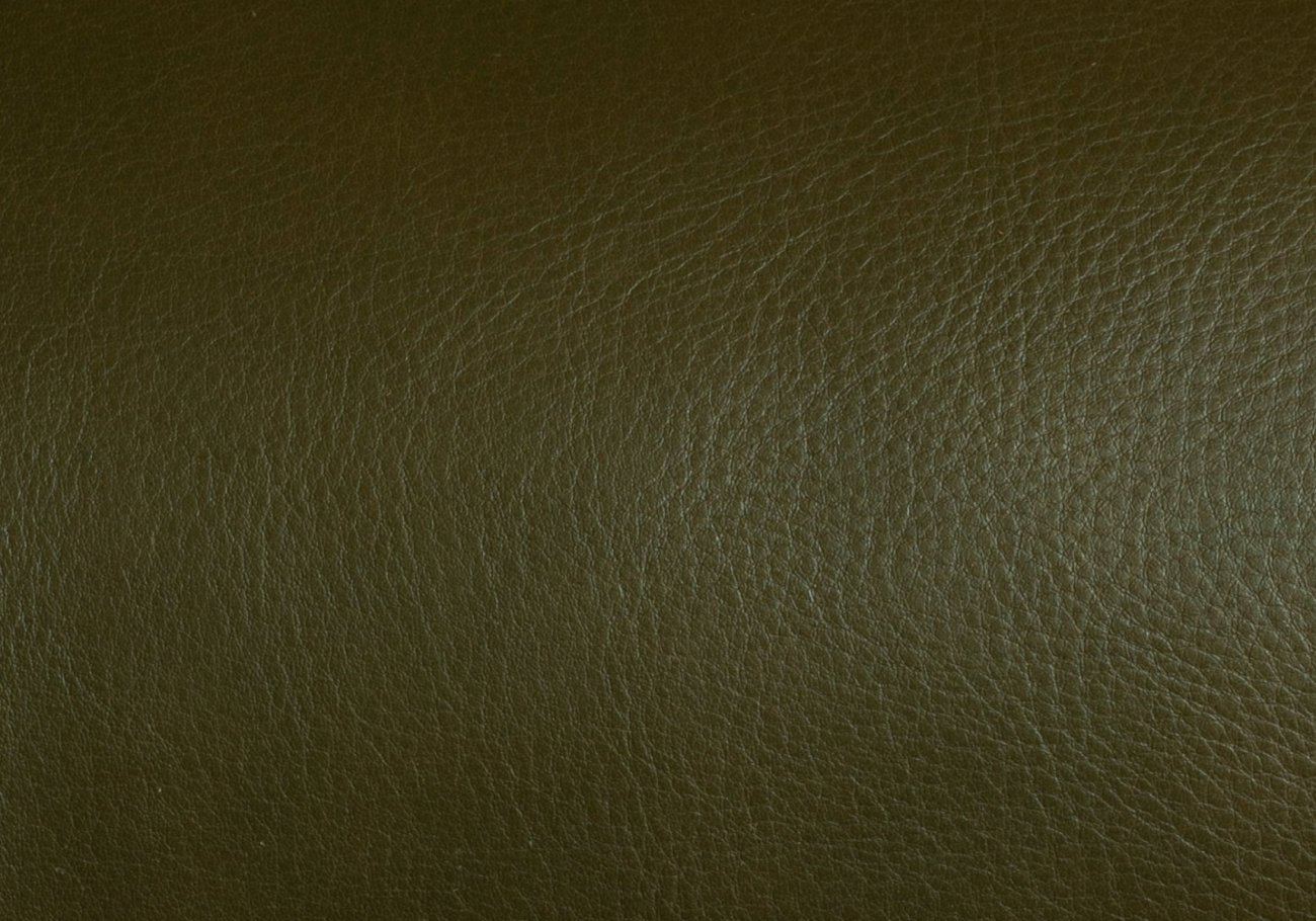 Olive Swatch Frank Clegg 1