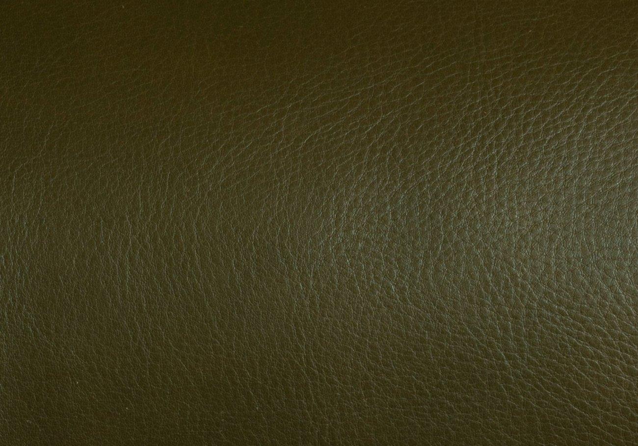 Olive Swatch Frank Clegg 3