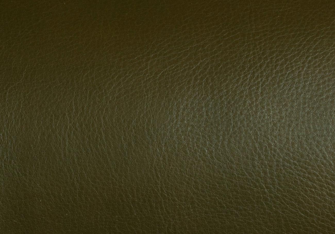 Olive Swatch Frank Clegg 4
